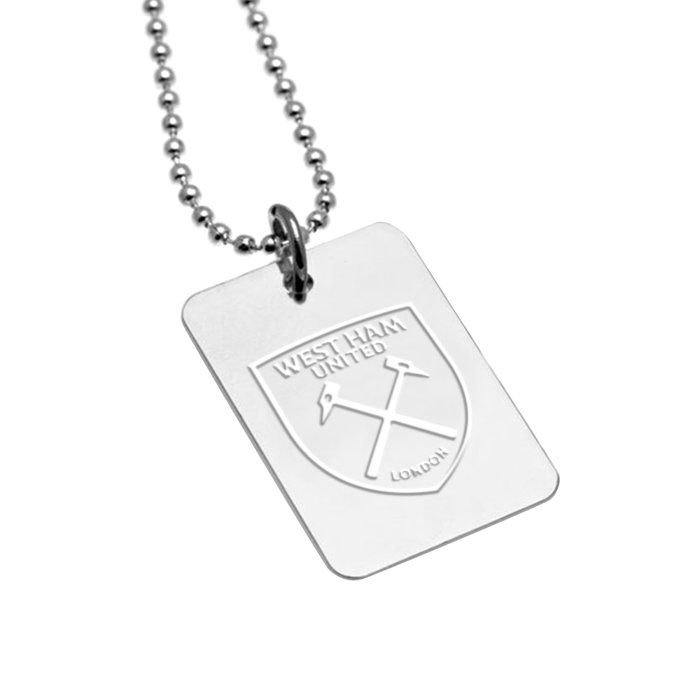 SILVER PLATED DOG TAG AND CHAIN